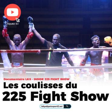 Encarts du site Fight show-01